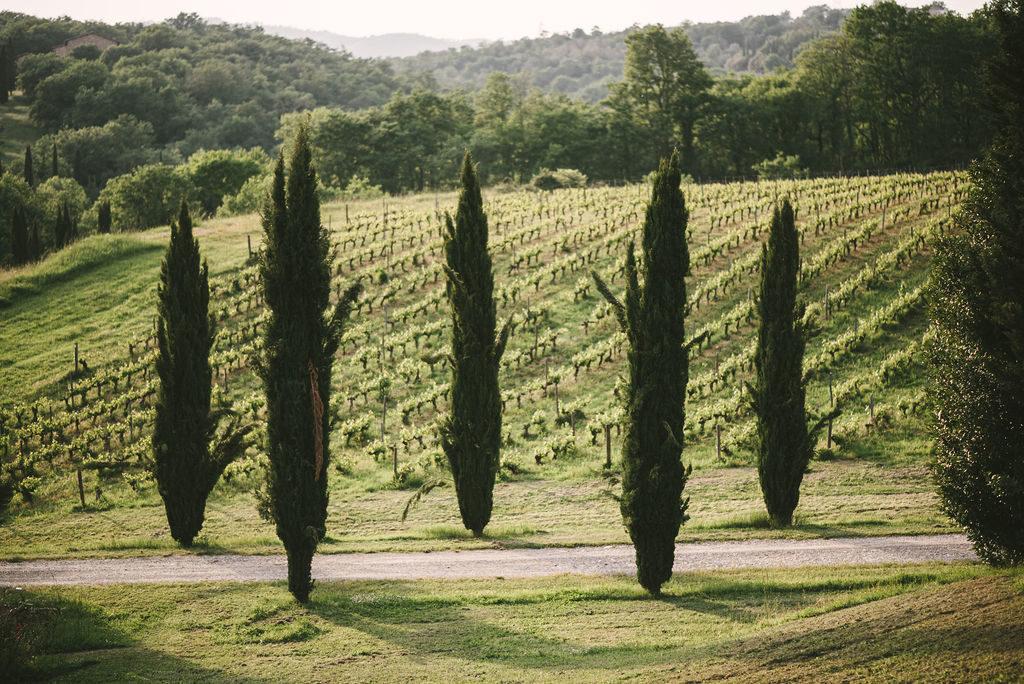 Chianti Landscape - Wedding at Villa La Selva - Italian Wedding Designer