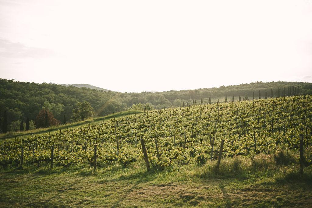 Tuscan Vineyards - Wedding at Villa La Selva - Italian Wedding Designer