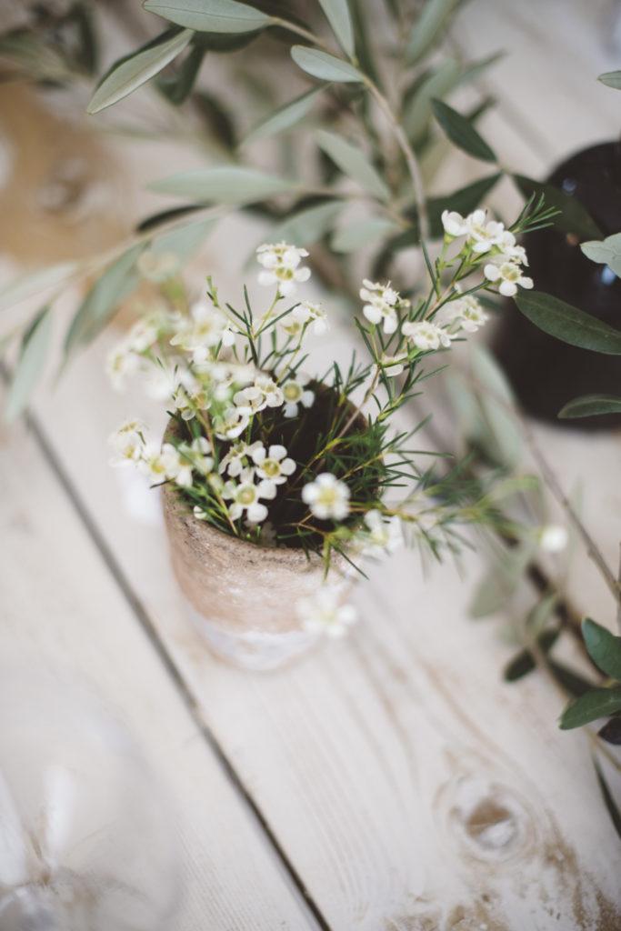 Plants Sustainable wedding in Italy - Italian Wedding Designer